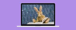 stuffed bunny reading book